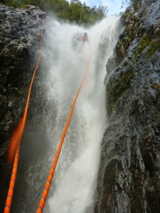 lost in the falls